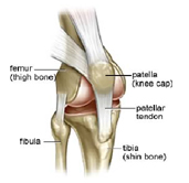 Knee Ligament injury,Ligament Injury, Ligament Injury Delhi, Ligament Injury South Delhi, Ligament Injury North Delhi, Ligament Injury east Delhi,Ligament Injury west Delhi,Ligament Injury india, Ligament Injury South India, Ligament Injury north india, Ligament injury east india, Ligament Injury west India,Ligament Injury USA, Ligament Injury canada, Ligament Injury Europe,Ligament Injury Asia, Knee Ligament Injury,Knee Ligament Injury Delhi, Knee Ligament Injury south delhi,knee ligament injury north delhi, kneeligament injury india, knee ligament injury south india,knee ligament injury north india, knee ligament injury asia, knee ligament injury europe,ACL injury, ACL injury delhi, ACL injury south delhi,ACL injury north delhi, ACL injury india,PCL injury,PCL injury india,Anterior Cruciate Ligament - ACL,Anterior Cruciate Ligament - ACL india,Anterior Cruciate Ligament - ACL delhi,Anterior Cruciate Ligament - ACL south delhi,Anterior Cruciate Ligament - ACL injury west delhi,Anterior Cruciate Ligament - ACL injury south india, Anterior Cruciate Ligament - ACL injury west india, Anterior Cruciate Ligament - ACL injury north india,physiotherapy, athletic therapy, sports medicine, sports medicine injury, sports medicine clinic india,spots medicine clinic usa,sports injury,ligament injury,dr.prateek sports medicine clinic,dr.prateek sports medicine clinic india,dr.prateek sports medicine clinic delhi,knee ligament,knee ligament injury,knee replacement, injuries, treatment, rehabilitation, massage, orthopedics, wellness,  lifestyle management, aerobic capacity, McKenzie technique, back pain, health, fitness, work accidents, arthritis, sciatica, rotator cuff tendinitis, plantar fascitis, heel spurs, tenis elbow, automobile, accident, orthotics, yoga, concordia, action sport physio